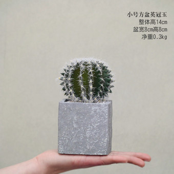 Mo Ge simulation more meat fake potted artificial plants cactus