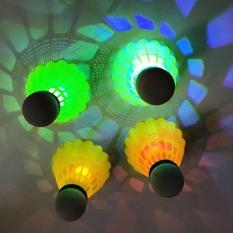 360DSC 4Pcs Pack LED Luminous Badminton Newfangled Dark Night Glow Lighting Shuttlecock - White - intl