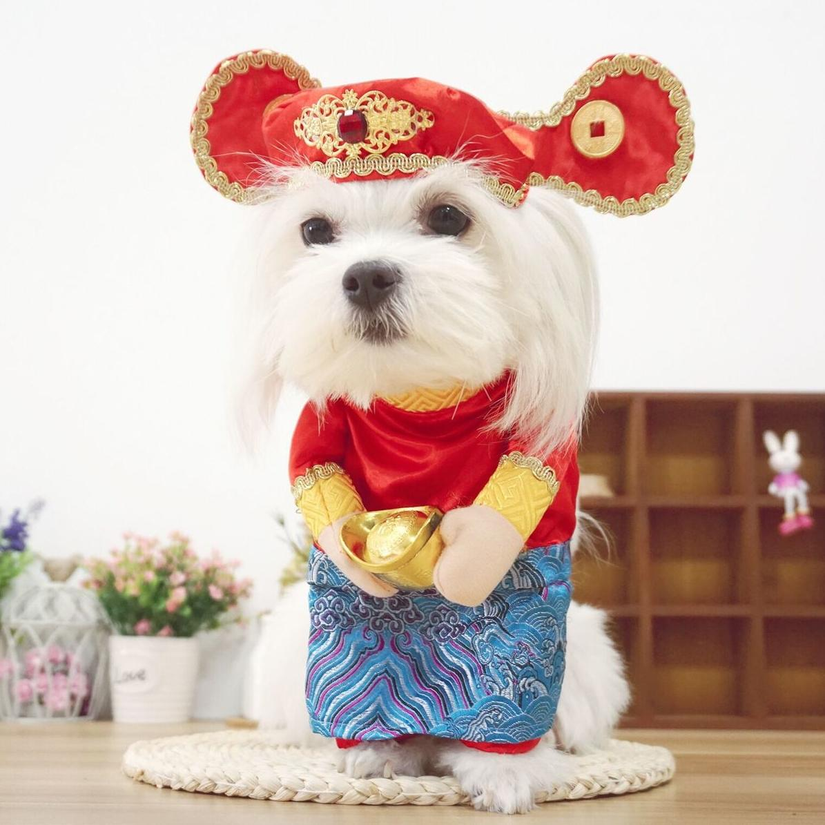 f80a67a4ad736 Latest Ebuy,OEM Dog Costumes Products | Enjoy Huge Discounts | Lazada SG