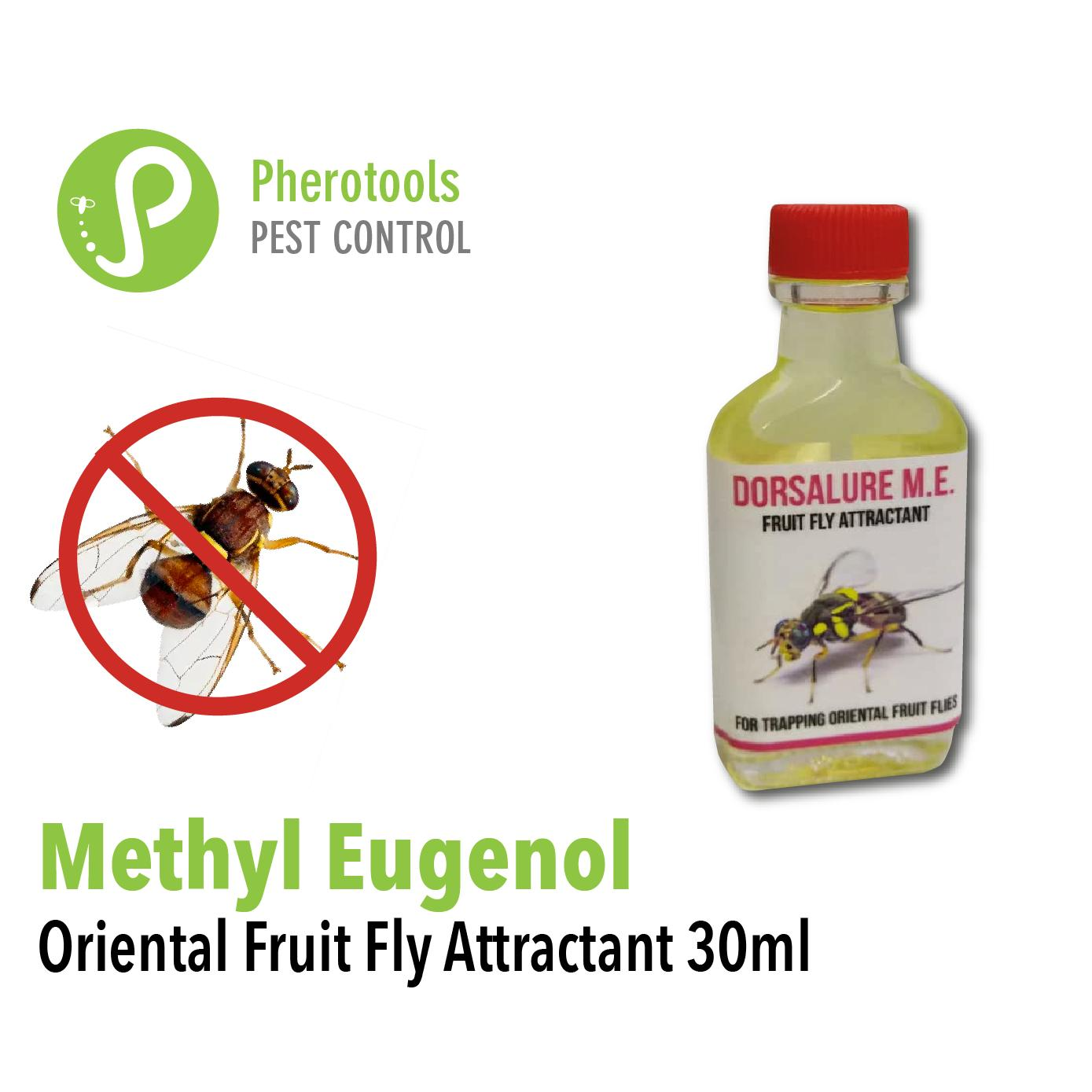 Methyl Eugenol Pheromone Lures (30ml) For organic pest control. Non-toxic, environmentally friendly oriental fruit fly attractant for use in trapping