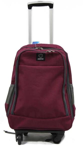 Detachable Trolley Backpack with Spinner Wheels Large