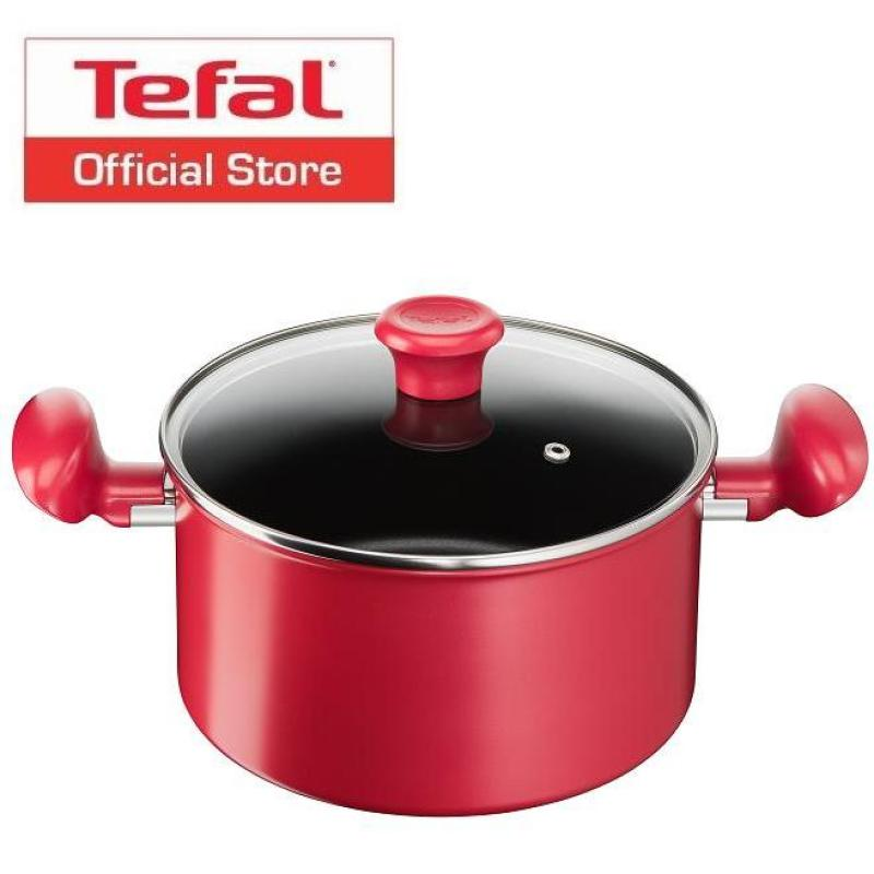 Tefal Pure Chef Plus Stewpot 22cm w/Lid C64279 Singapore
