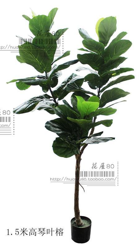 Top Grade Model Ficus Lyrata Rubber Tree Northern Europe Hotel Living Room Snnei Clothing Store Showcase Landing Potted Plant Simulated Plants