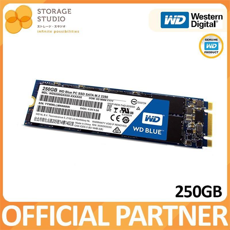 Buy Wd 250Gb Blue M 2 Ssd Cheap Singapore