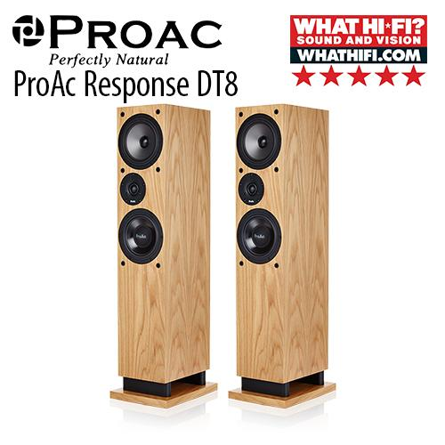 Proac Response Dt8 Floorstanding Speaker By Anson Audio.