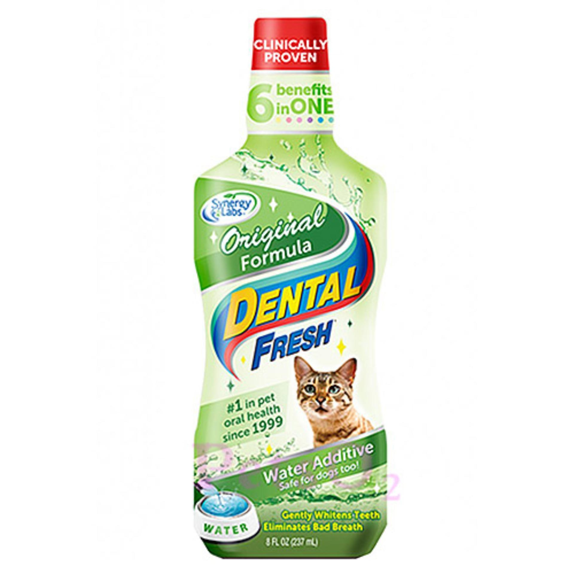 Dental Fresh For Cat 8oz By Petso2.
