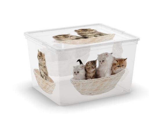 C Box Style Puppy & Kitten - Cube W/Lid