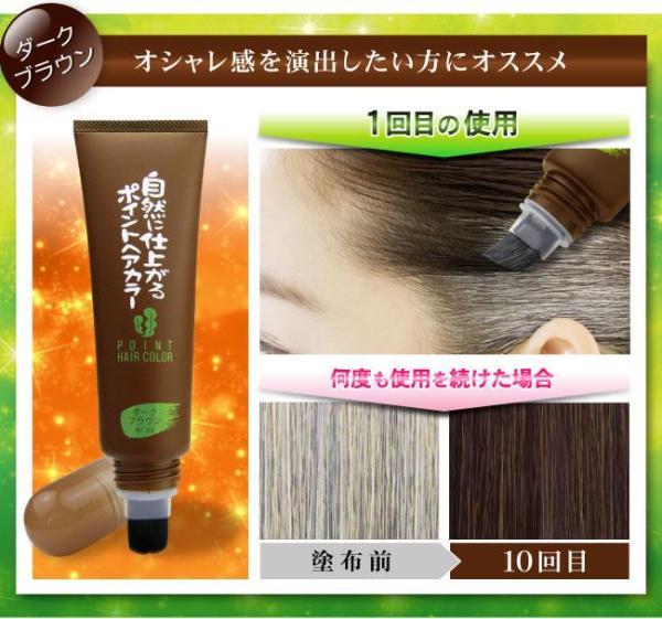 Buy Japan Rishiri Natural Kelp Grey Hair Concealer-Point Hair Color (Dark Brown) Singapore