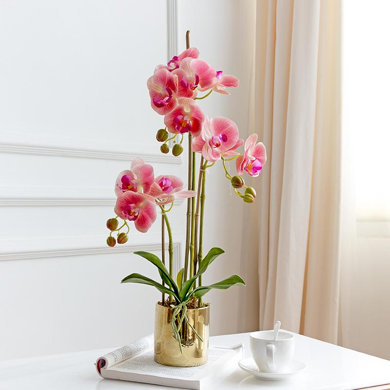 Handfeel Moisturizing Butterfly Orchid Imitation Flowers Set Vase Potted Plant Artificial Flowers Corsage Living Room Asian Creative Luxury Art Works Floral 3 Branch Flowers