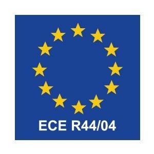 Image result for ECE R44/04