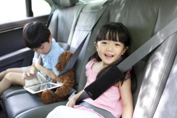 Bonbijou Seat Belt Pillow (Black) Singapore