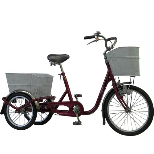 V-Tec Tricycle Standard By Eco Biz Int.