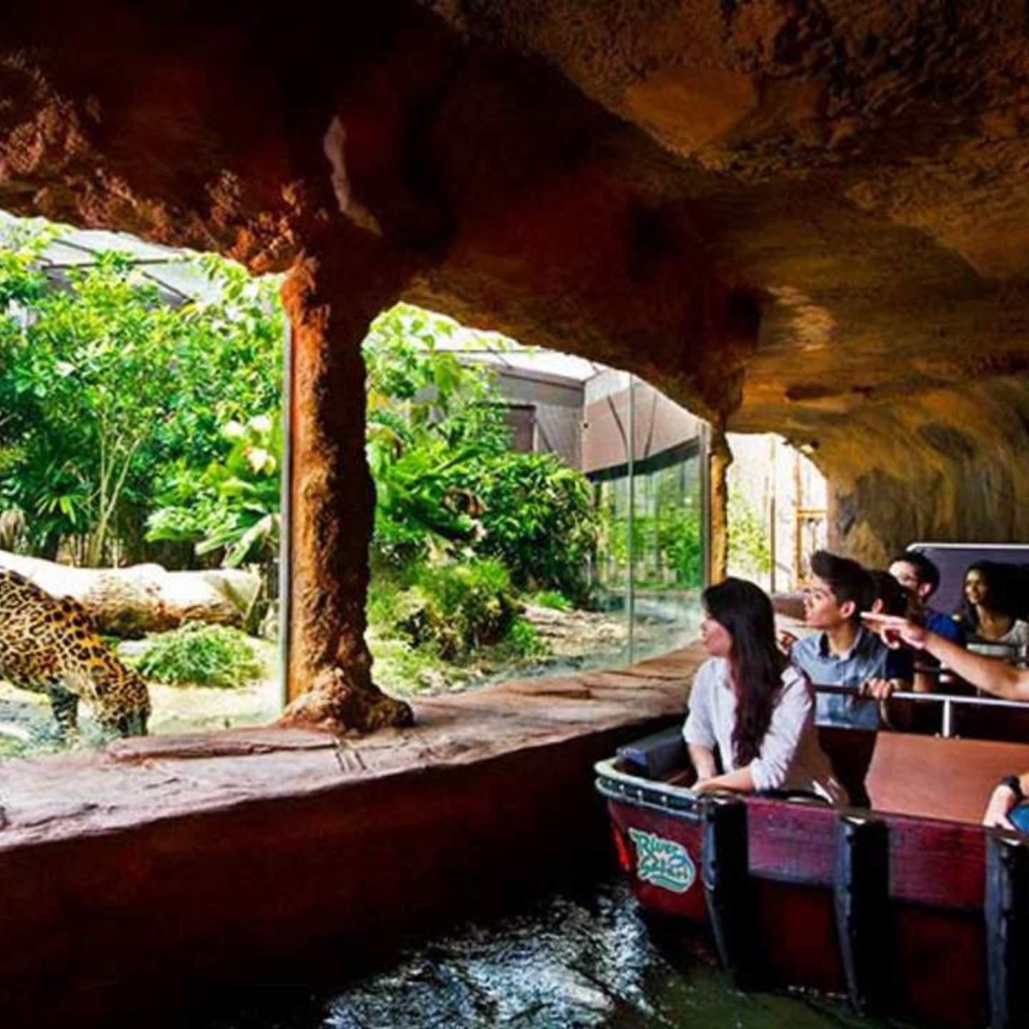 River Safari (adult) By Monster Day Tours.