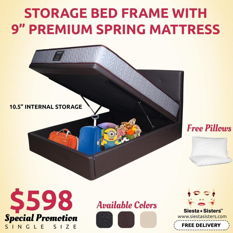 10.5 Internal Storage Bed Frame with 9 Premium Spring Mattress