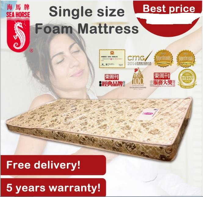 SeaHorse Single Size Foam Mattress