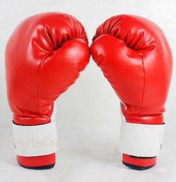 Boxing Sparring Glove - Red (pair) Punching Bag Gloves.
