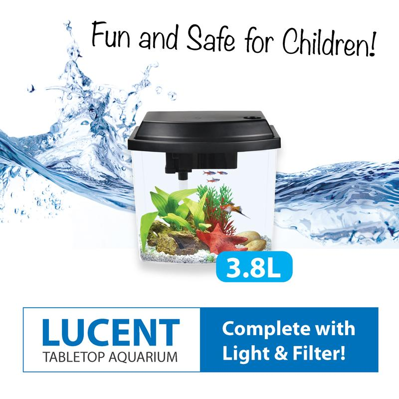Tabletop Aquarium Fish Tank (with Led Lights And Filter) 3.8l By Fins And Paws.