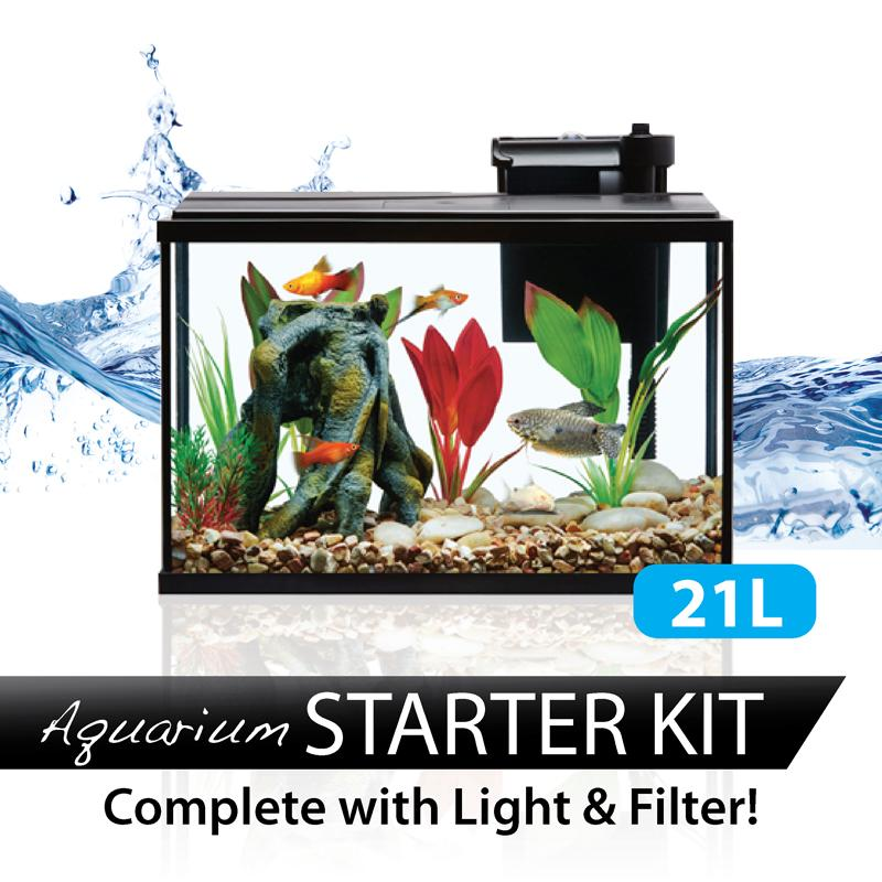 21l Starter Aquarium Glass Fish Tank By Fins And Paws