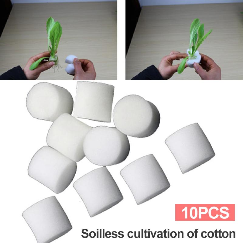 Tsujiu Store 10pcs Foam White Reusable Mini Insert Plant Soilless Hydroponic