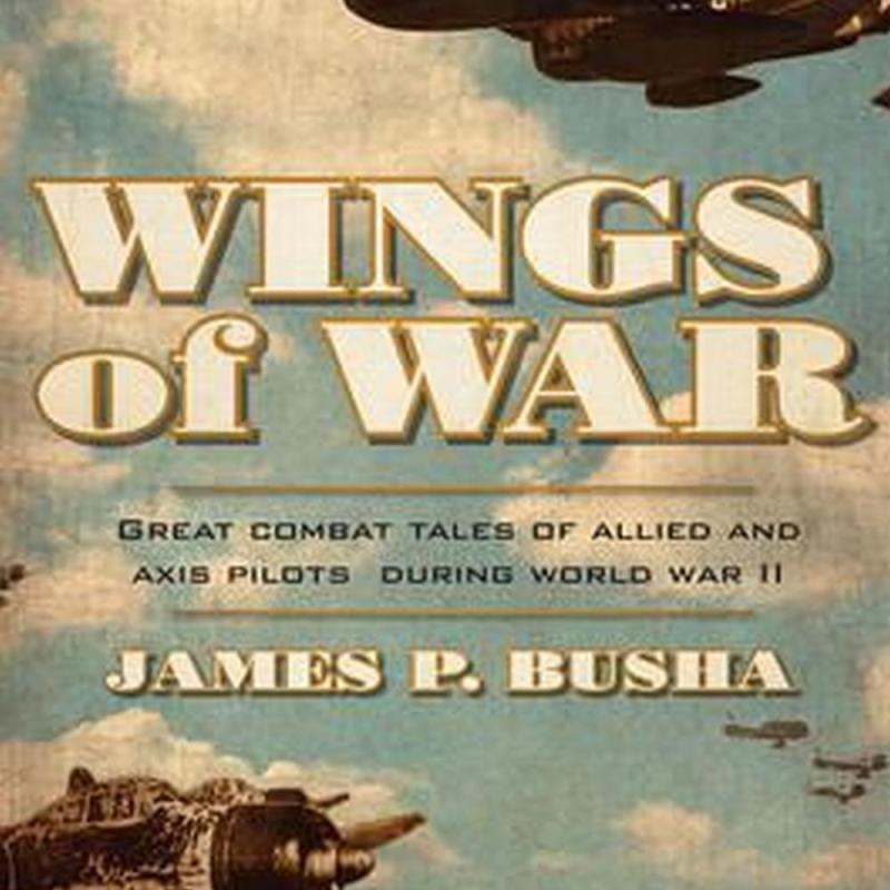 Wings of War (Author: James P. Busha, ISBN: 9780760348529)