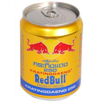 Harga Redbull Energy Drink in Can 250ml x 24cans