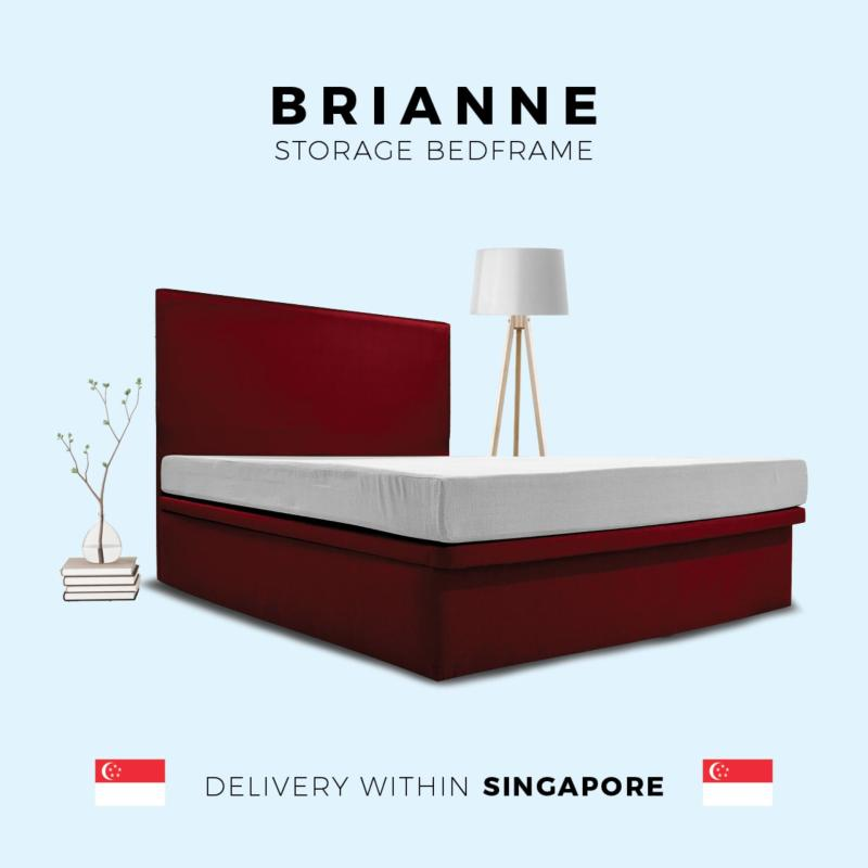 Brianne Queen Size Storage Bedframe