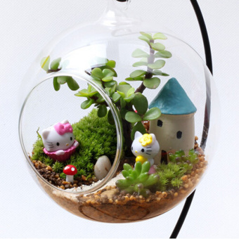 Clear Round Glass Vase Hanging Terrarium Hydroponic Decor 12cm WithHolder