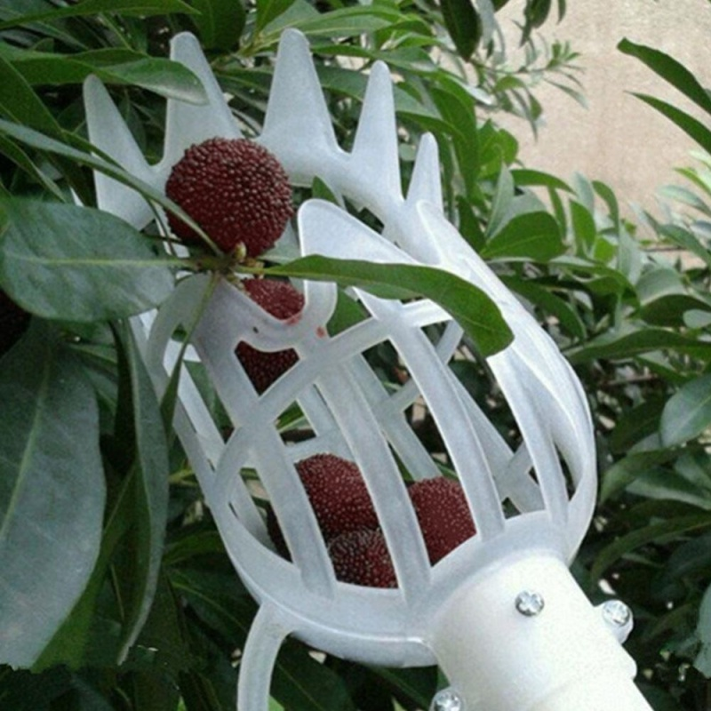 Fruit Picker Catcher Gardening Farm Garden Hardware Picking Device Tool - intl