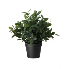 ikea artificial potted plant sage 95 inch intl
