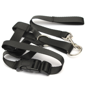 Harga Halti Head collar for Dogs (Size L)