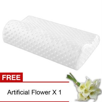 Yika Slow Rebound Memory Foam Pillow (White) [Buy 1 Get Freebie]