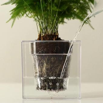 Boskke Cube Self-Watering Planter (Imported from UK) Local Stock - 3