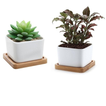 Harga Succulent Planter Succulent Pots with Bamboo Tray - Cactus Pots Containers Pots for Succulents Planting Mini Succulent Pots Square Ceramic Pots 2 pcs/ a lot - intl
