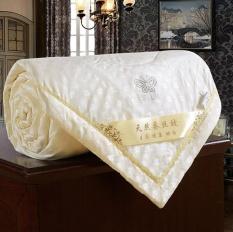 Buy & Sell Cheapest SILK QUILT Best Quality Product Deals ... : silk quilt singapore - Adamdwight.com