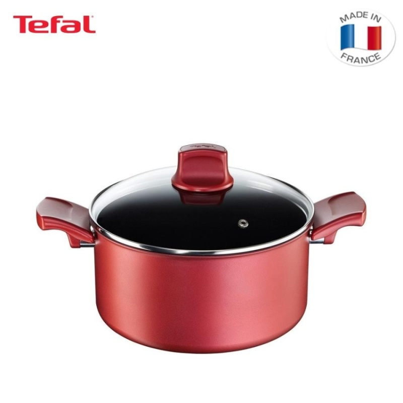 Tefal Character Stewpot 24cm - C68246 Singapore
