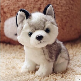 Harga 18cm Husky Plush Toys Cute Soft Animal Dog Toys Doll - intl