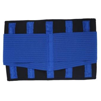 Adjustable Waist Guard Back Brace Support Protector Lumbar Belt(Blue-L) - intl - 2