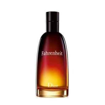Christian Dior Fahrenheit EDT for Men 100ml - 2