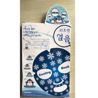 DKCC Ice Cooling Mask - For Four Seasons / Face Swelling Reduction Mask - 2