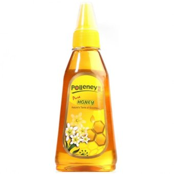 Harga Polleney Pure Honey 380g