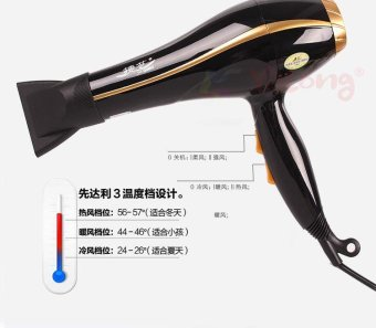 Harga Professional Cold and Hot Air High speed Hair Dryer 2600W-Black(HD-17) - intl