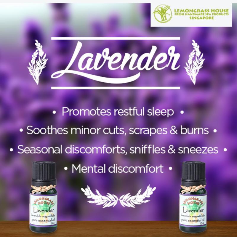 Buy Lemongrass House Lavender Essential Oil 10ml Singapore