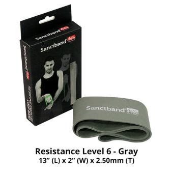 Harga Sanctband Active Loop Band (Resistance Level 6 - Gray)