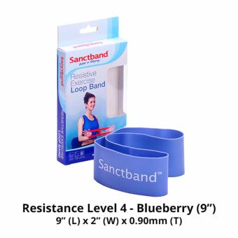 Harga Sanctband 9-inch Loop Band (Resistance Level 4 - Blueberry)