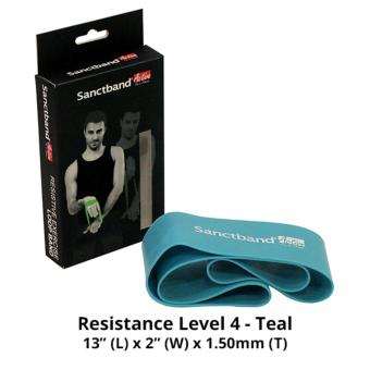 Harga Sanctband Active Loop Band (Resistance Level 4 - Teal)