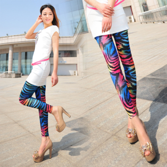 New color zebra wild personality tide female candy color sexy leggings pantyhose