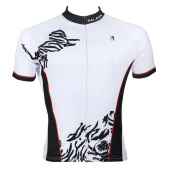 PALADIN SPORT Cycling Men's Short Sleeve Jersey 033 - intl