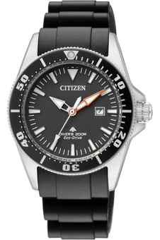 Harga Citizen Promaster Eco-Drive Ladies - EP6040-02E