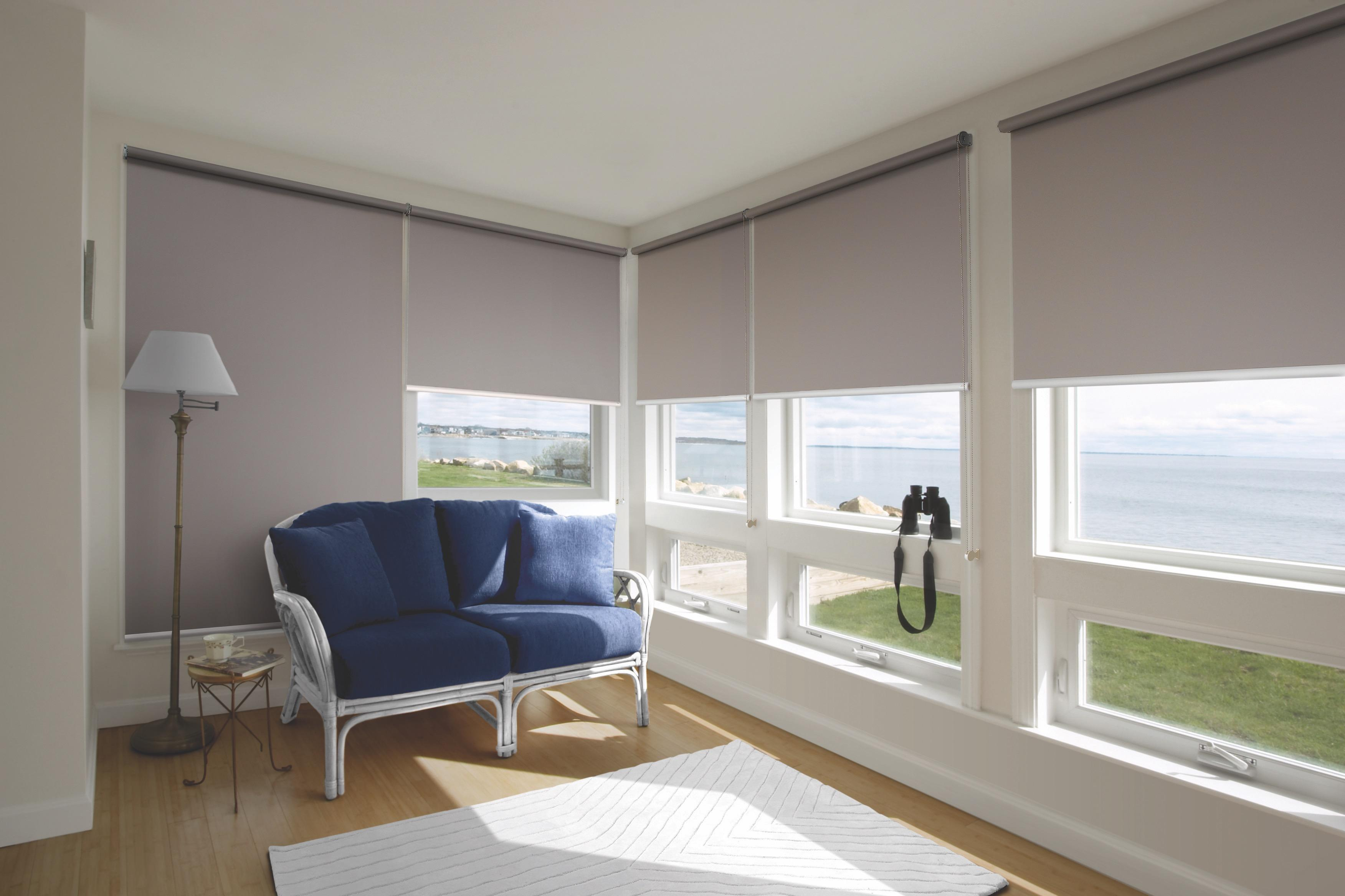 Home Office Decor Blackout Roller Blind Ecohaus Singapore Roller Blinds  (Width x Height)